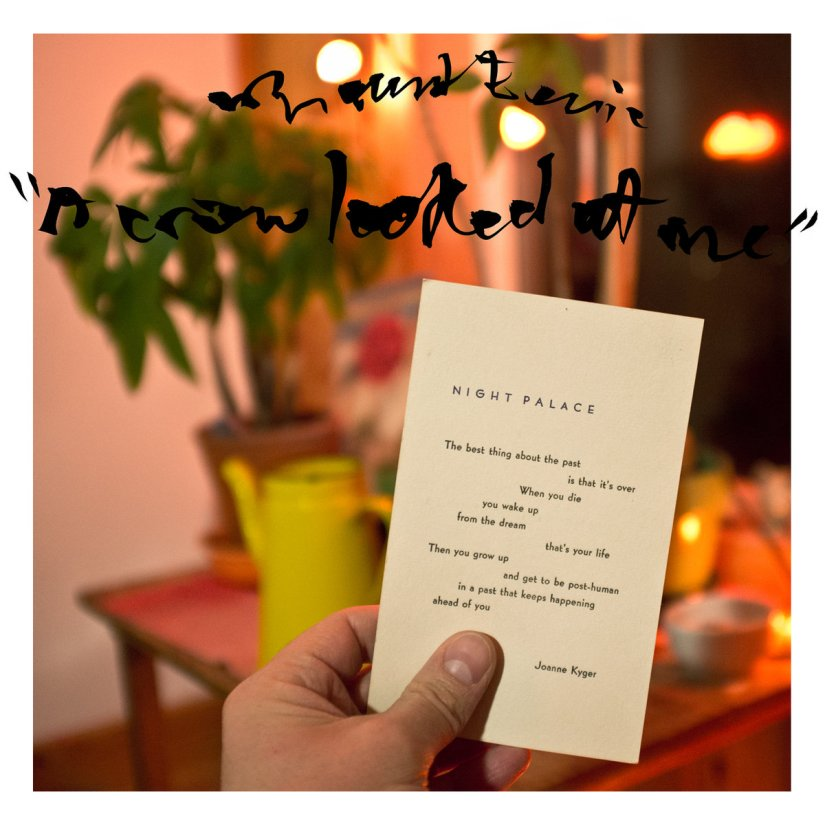 Album of the Year 2017: #7 Mount Eerie – A Crow Looked atMe